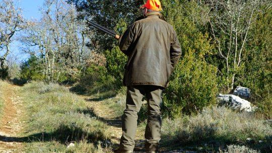 La chasse au pays Basque
